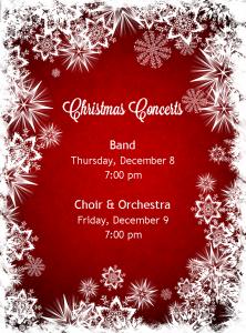 Christmas Concert Pic